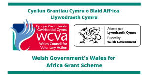 WElsh Government Wales for Africa Scheme logo